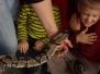 Spotkanie z wężami styczeń 2014