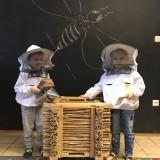 Edukacja przyrodnicza – poznajemy pszczoły