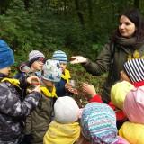 Wielka Wyprawa Odkrywców, sensoryczny spacer po lesie