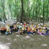 Spacer po lesie i budowanie szałasów ze Zmysłami w lesie